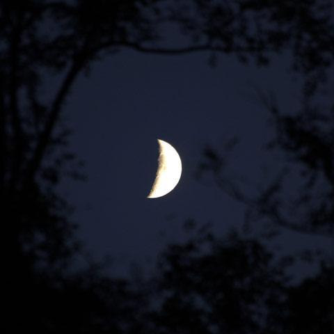 071018-2.jpg
