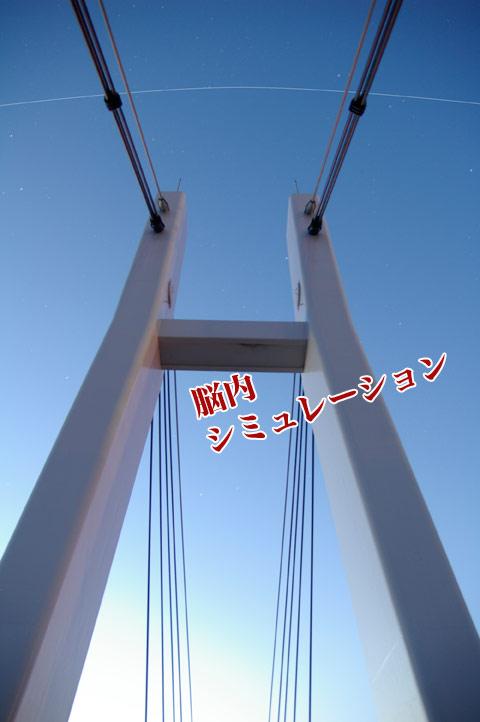 100625-3_IGP6049.jpg